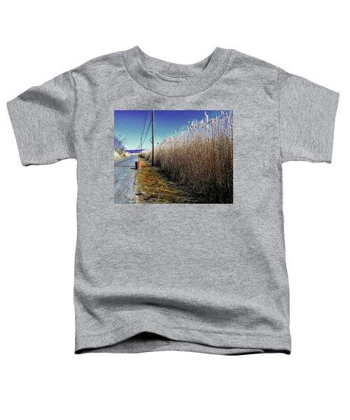 Hudson River Winter Walk Toddler T-Shirt