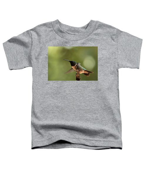 Hummingbird Take-off Toddler T-Shirt