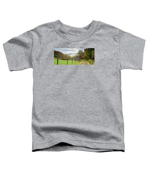 Hunting Cabin-3 Toddler T-Shirt