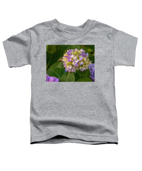 Hydrangea 2 Toddler T-Shirt