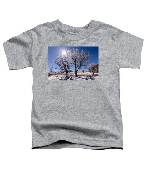 Ice Coated Trees Toddler T-Shirt
