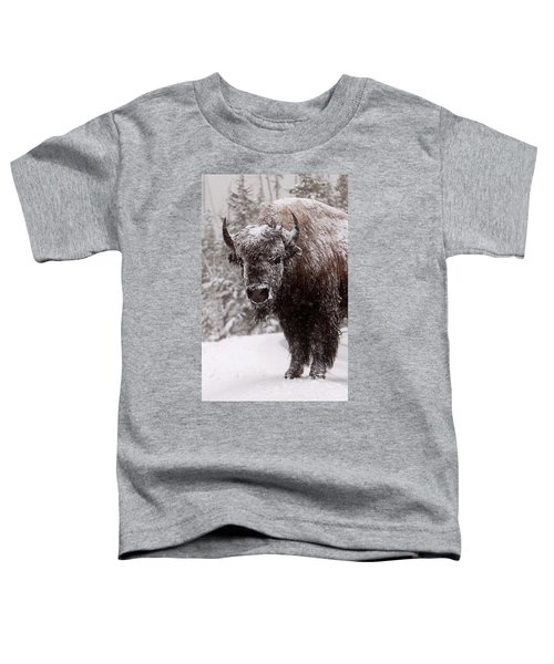 Ice Cold Winter Buffalo Toddler T-Shirt