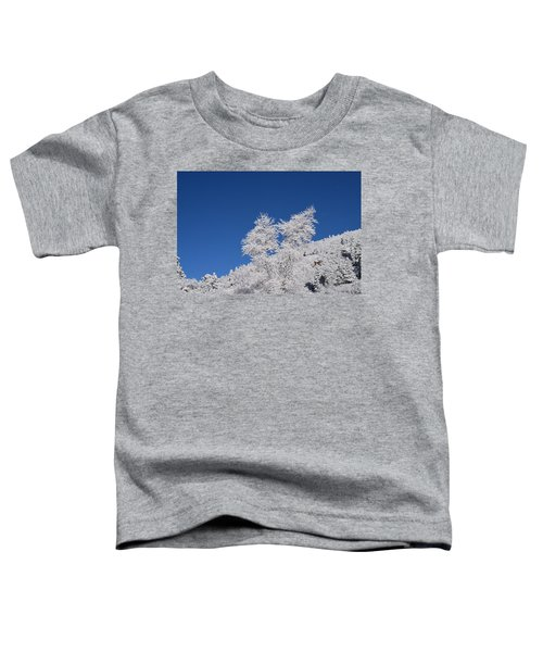 Ice Crystals Ute Pass Cos Co Toddler T-Shirt