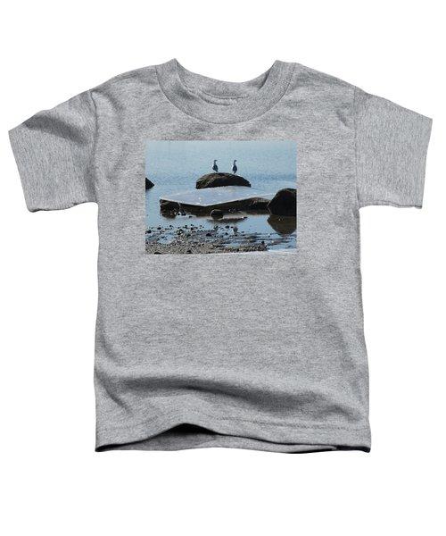 Ice Monolith Toddler T-Shirt