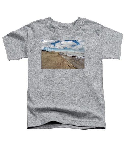 Ice Shelf Toddler T-Shirt