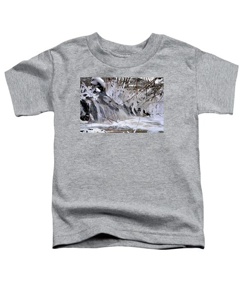 Icy Spring Toddler T-Shirt