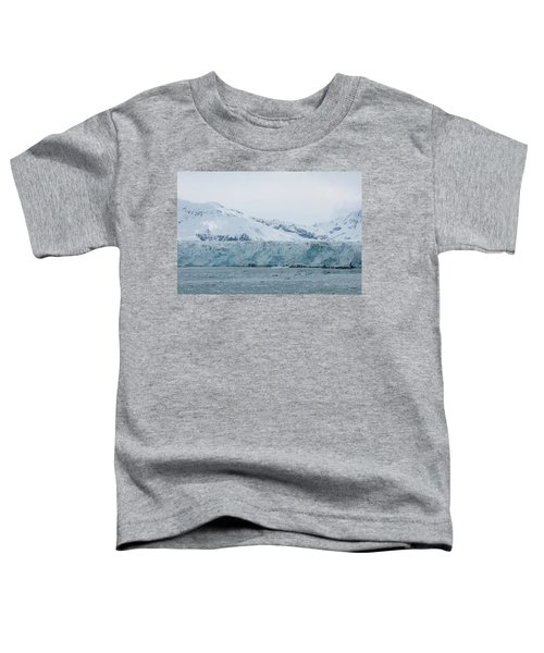 Icy Wonderland Toddler T-Shirt