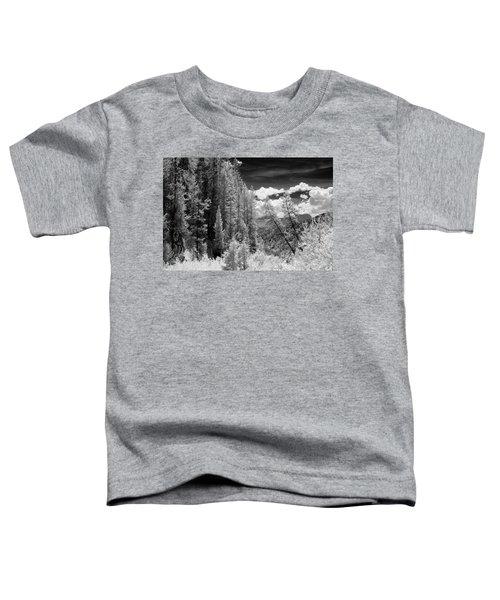 Idaho Passage Toddler T-Shirt