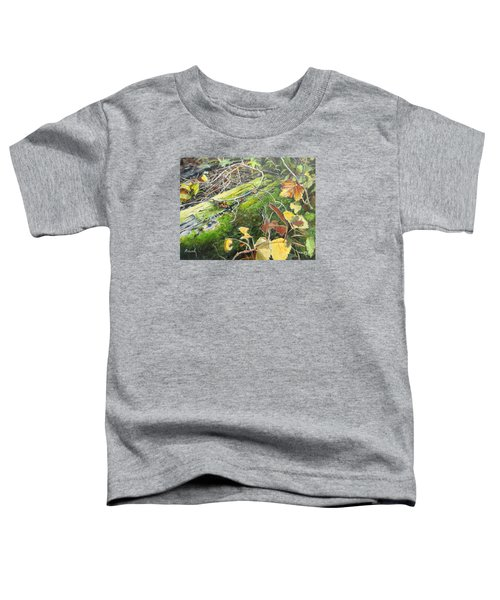 If There Were Fairies Toddler T-Shirt