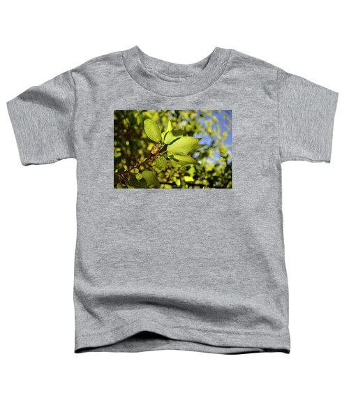 Illuminated Leaves Toddler T-Shirt