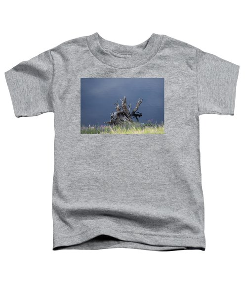 Stump Chambers Lake Hwy 14 Co Toddler T-Shirt