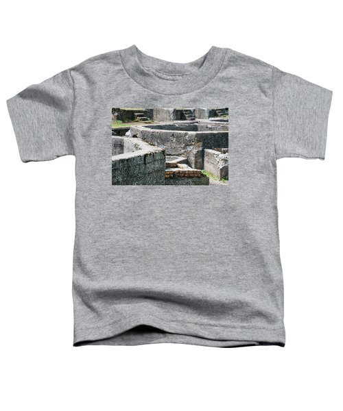 In The Ruins 6 Toddler T-Shirt
