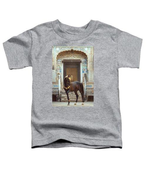 Indian Treasure Toddler T-Shirt