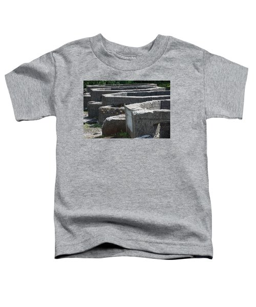 Into The Ruins 3 Toddler T-Shirt
