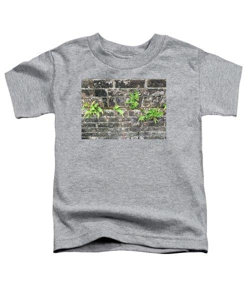 Intrepid Ferns Toddler T-Shirt