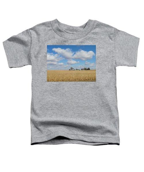 Iowa 3 Toddler T-Shirt