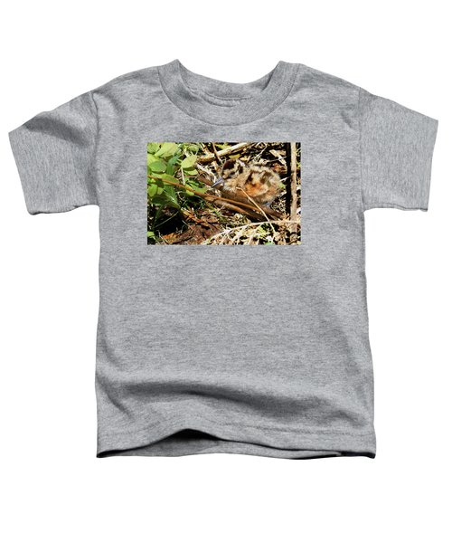 It's A Baby Woodcock Toddler T-Shirt by Asbed Iskedjian