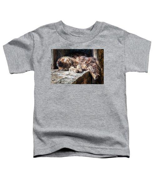 It's A Hard Life Toddler T-Shirt