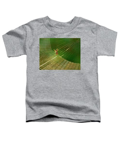 Itsy Bitsy Toddler T-Shirt