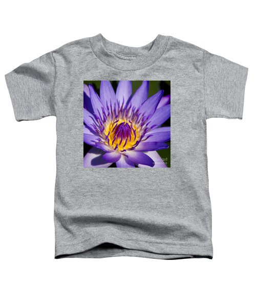 Journey Into The Heart Of Love Toddler T-Shirt