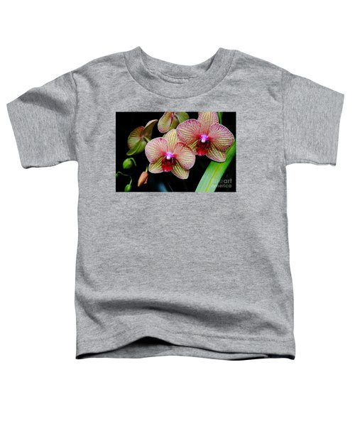 Joy Within Toddler T-Shirt