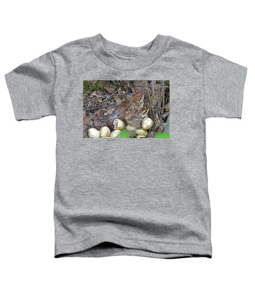 Just Hatched Ruffed Grouse Chicks Toddler T-Shirt