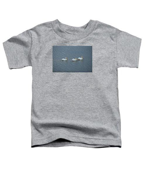 Triple Pelicans Lake John Swa Co Toddler T-Shirt