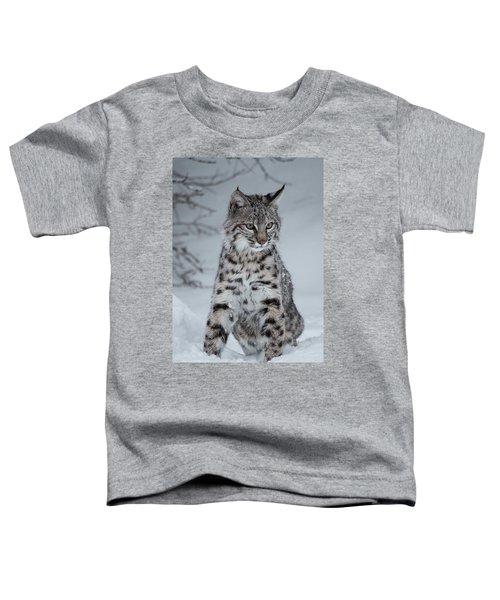 Juvenile Bobcat In The Snow Toddler T-Shirt