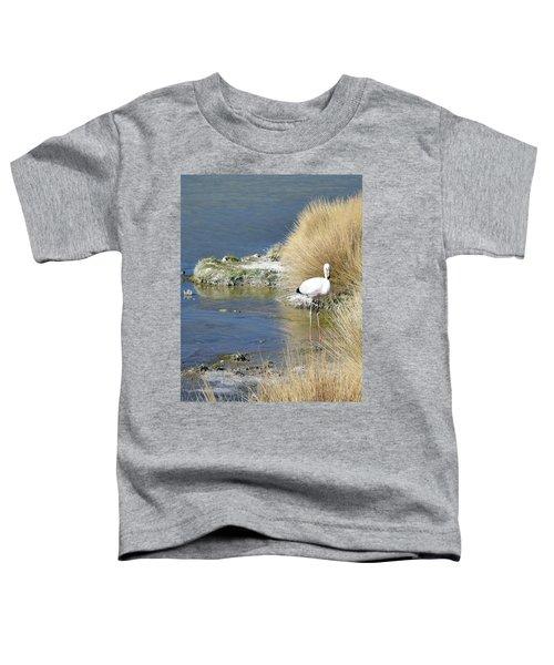 Juvenile Flamingo No. 64 Toddler T-Shirt by Sandy Taylor