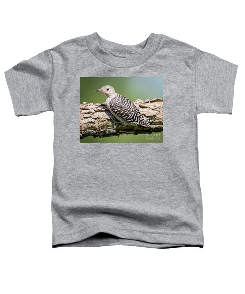 Juvenile Red-bellied Woodpecker Toddler T-Shirt