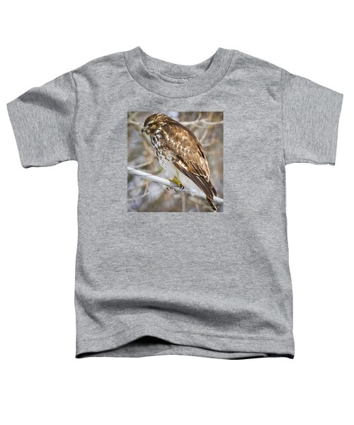 Toddler T-Shirt featuring the photograph Juvenile Red-shouldered Hawk  by Ricky L Jones