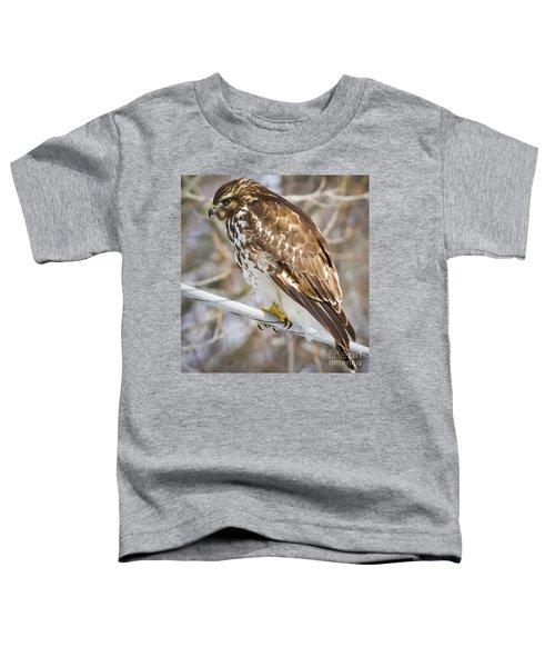 Juvenile Red-shouldered Hawk  Toddler T-Shirt