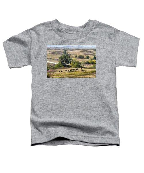 Kansas Plains  Toddler T-Shirt
