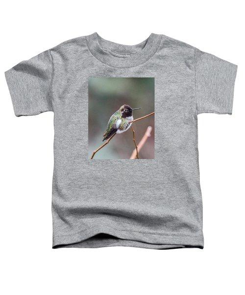 Karisa's Hummingbird.2 Toddler T-Shirt
