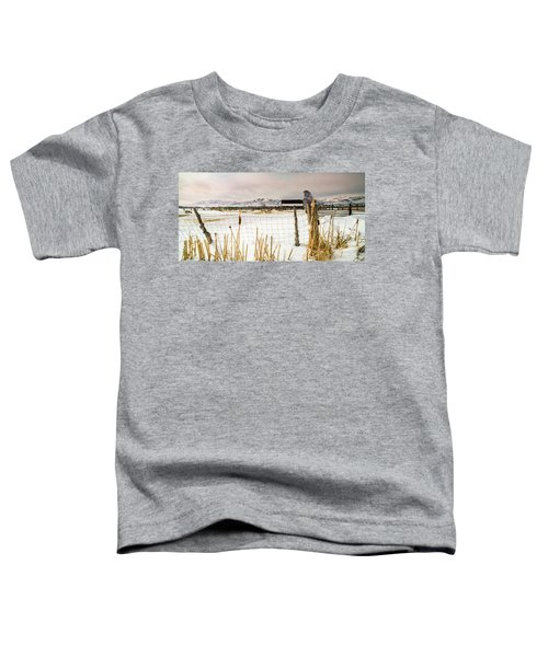 Keeping Watch Toddler T-Shirt