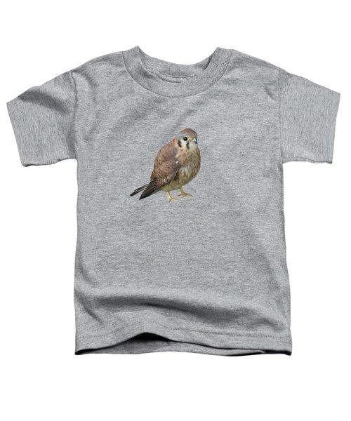 Kestrel Toddler T-Shirt by Laurel Powell
