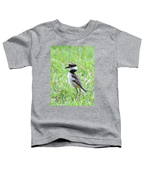 Killdeer Chick 3825 Toddler T-Shirt