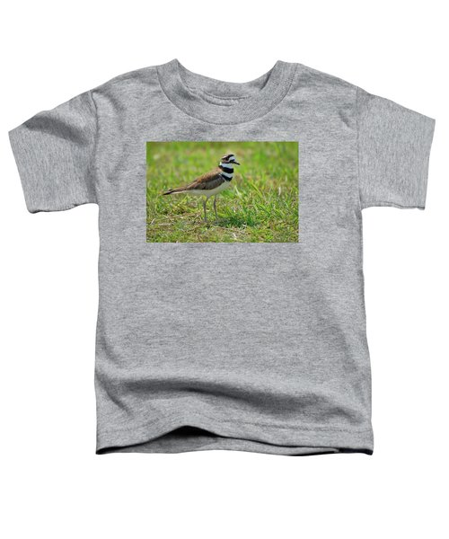 Killdeer Toddler T-Shirt