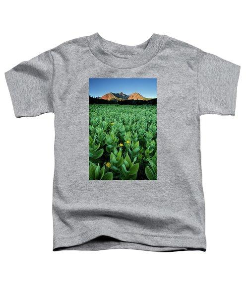 Kilpacker Basin Toddler T-Shirt