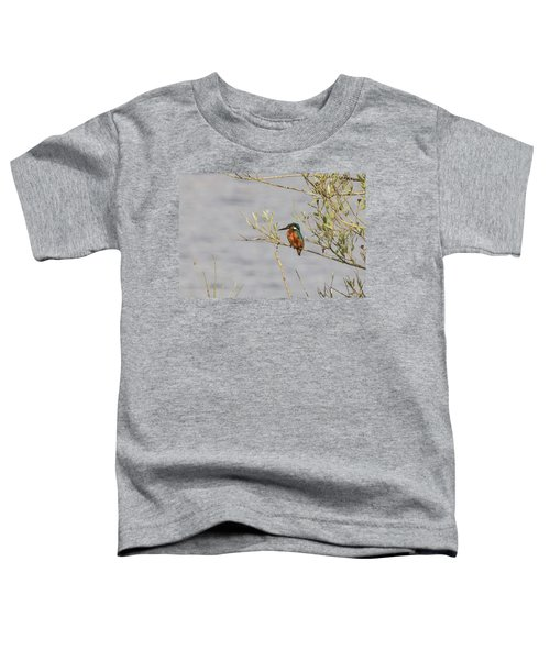 Kingfisher Waiting Toddler T-Shirt