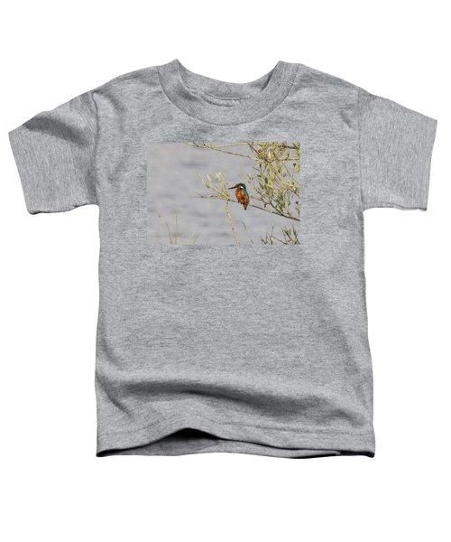 Kingfisher Waiting Toddler T-Shirt