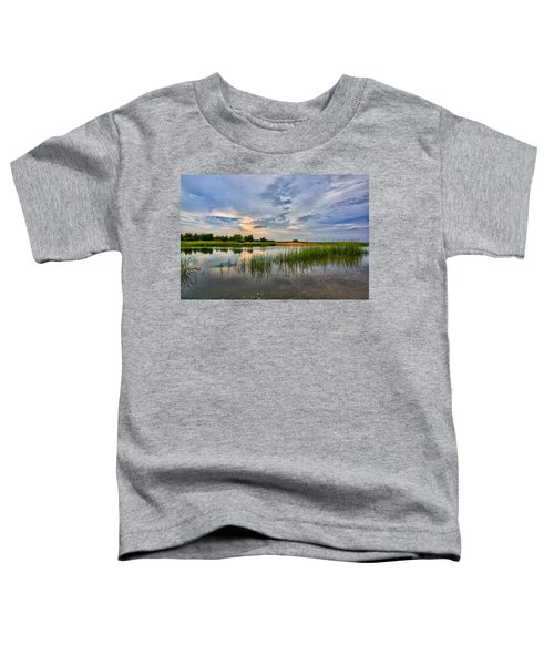 Kings Park Bluffs Toddler T-Shirt