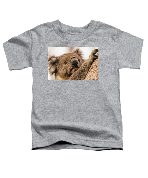 Koala 3 Toddler T-Shirt