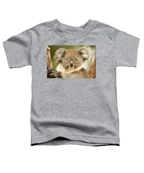 Koala Snack Toddler T-Shirt by Mike  Dawson