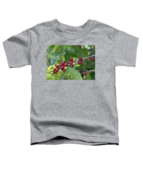 Kona Coffee Cherries Toddler T-Shirt