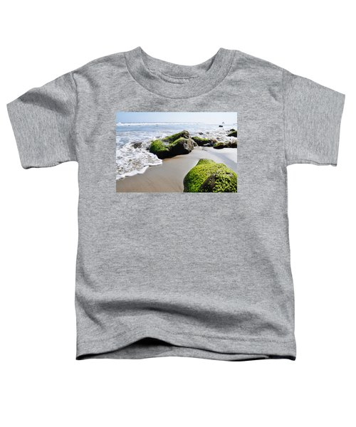 La Piedra Shore Malibu Toddler T-Shirt