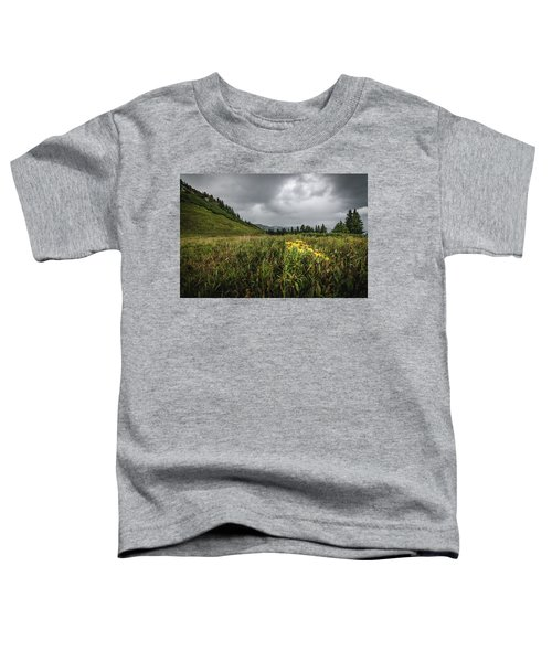 La Plata Wildflowers Toddler T-Shirt