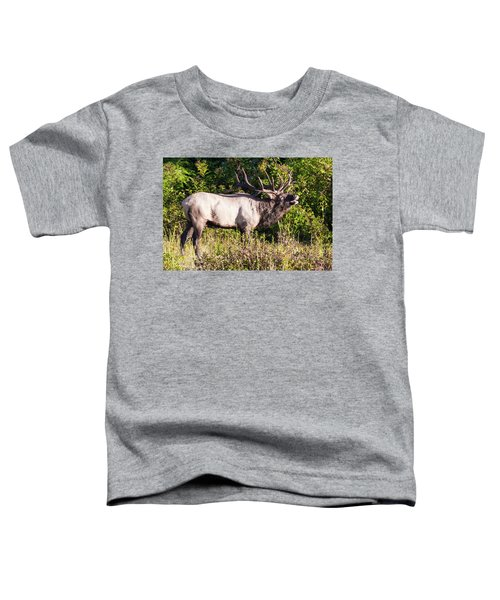 Large Bull Elk Bugling Toddler T-Shirt