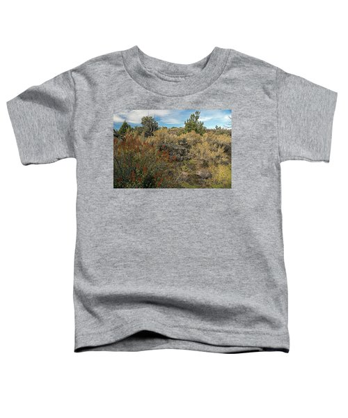 Lava Formations Toddler T-Shirt
