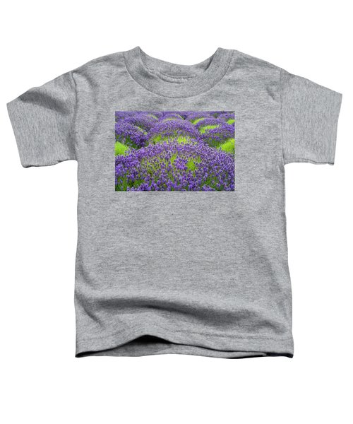 Lavender In Blooming Toddler T-Shirt